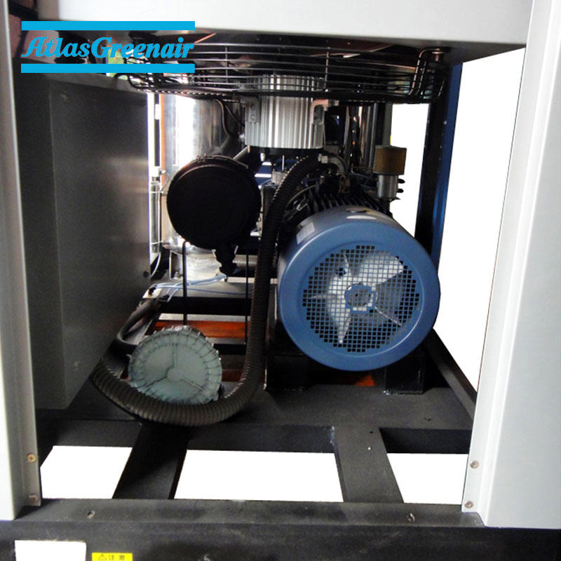 ZR Oil Free Rotary Screw Air Compressor