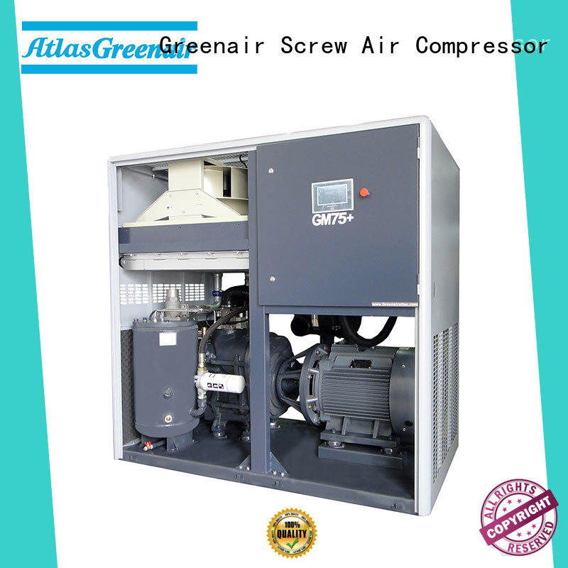 Atlas Greenair Screw Air Compressor variable speed air compressor with an asynchronous motor customization