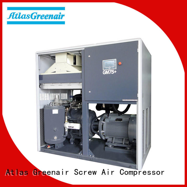 Atlas Greenair Screw Air Compressor professional variable speed air compressor with four pole motor for tropical area