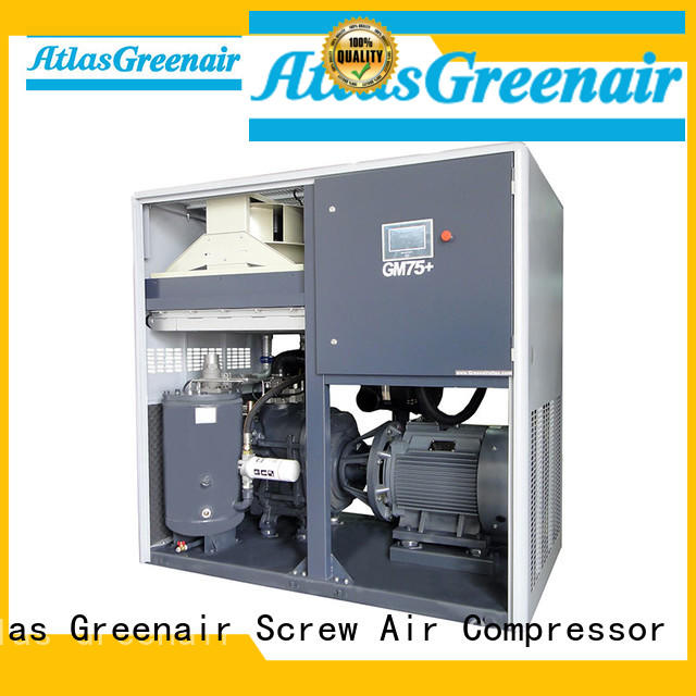 Atlas Greenair Screw Air Compressor customized vsd compressor atlas copco with a single air compressor for sale